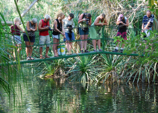 We staan op de brug met onder ons krokodillen
