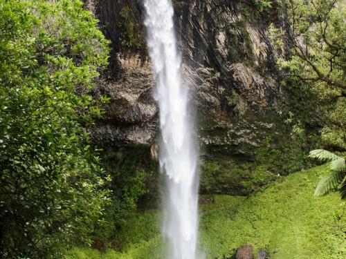 Bridal Veil Falls bij Raglan